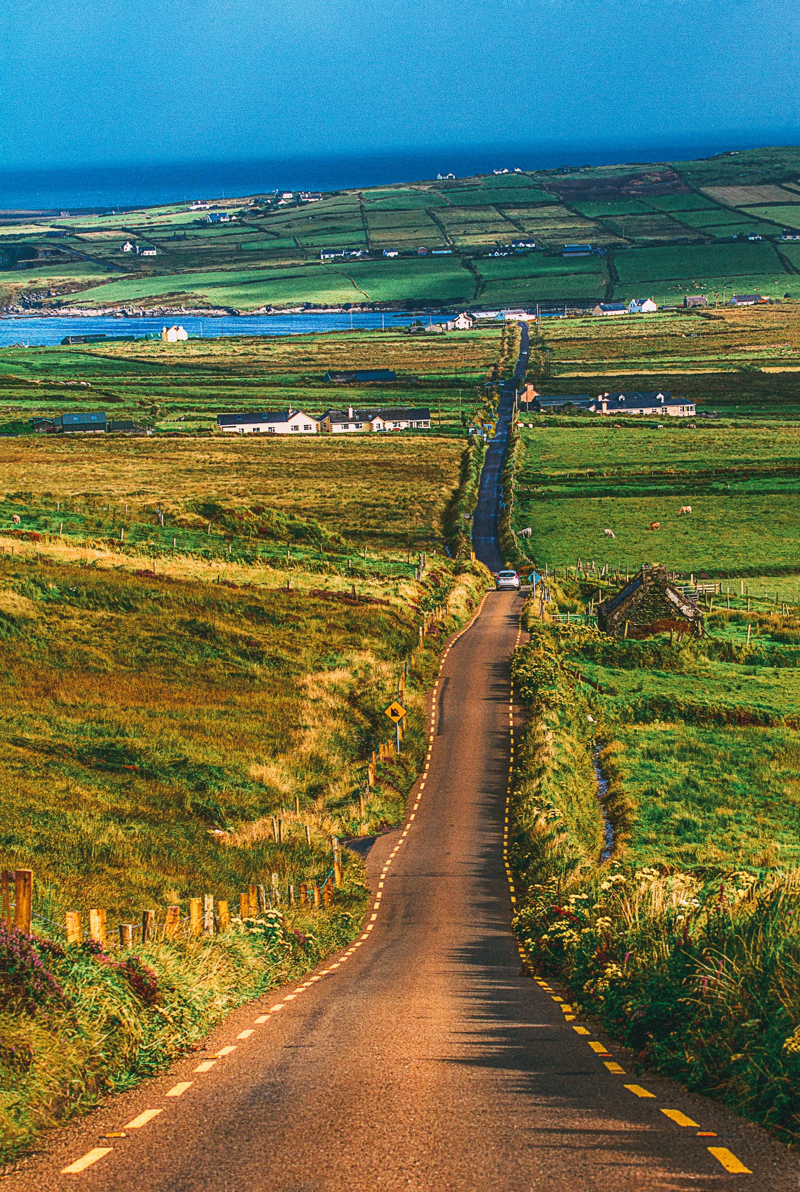 12 Of The Best Hikes In Ireland You Have To Walk (12)