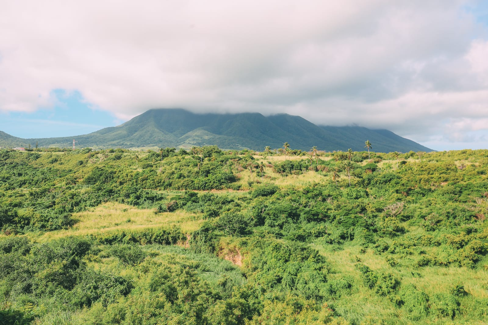 Rugged Coastlines, Old Forts And Lobster Dinners... On The Caribbean Island Of St Kitts (17)