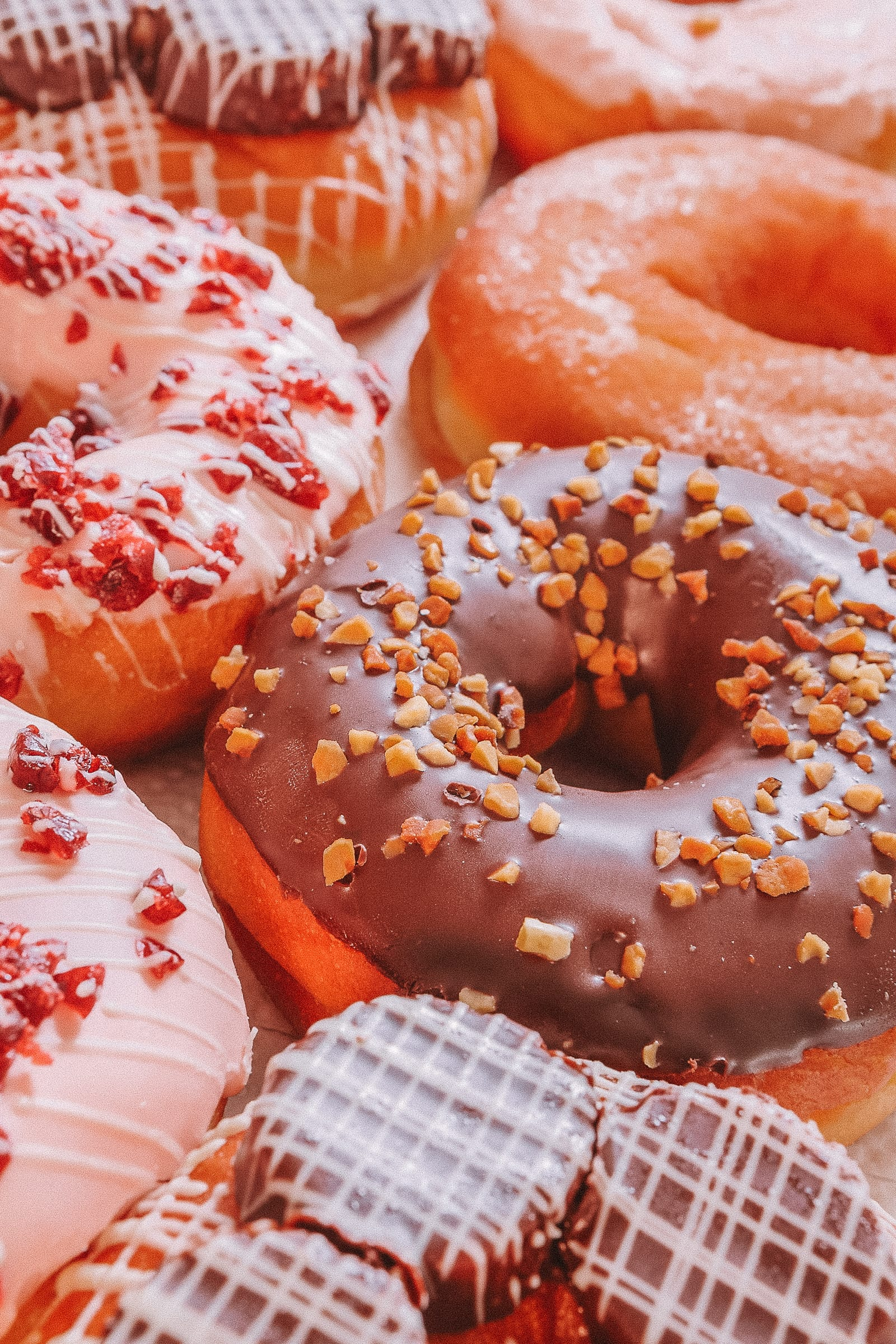 Best Donuts In New York City (8)