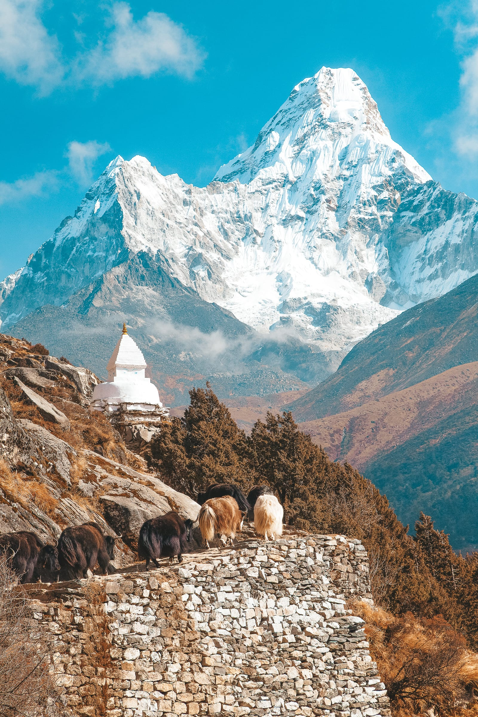 Best places to visit in Nepal (8)