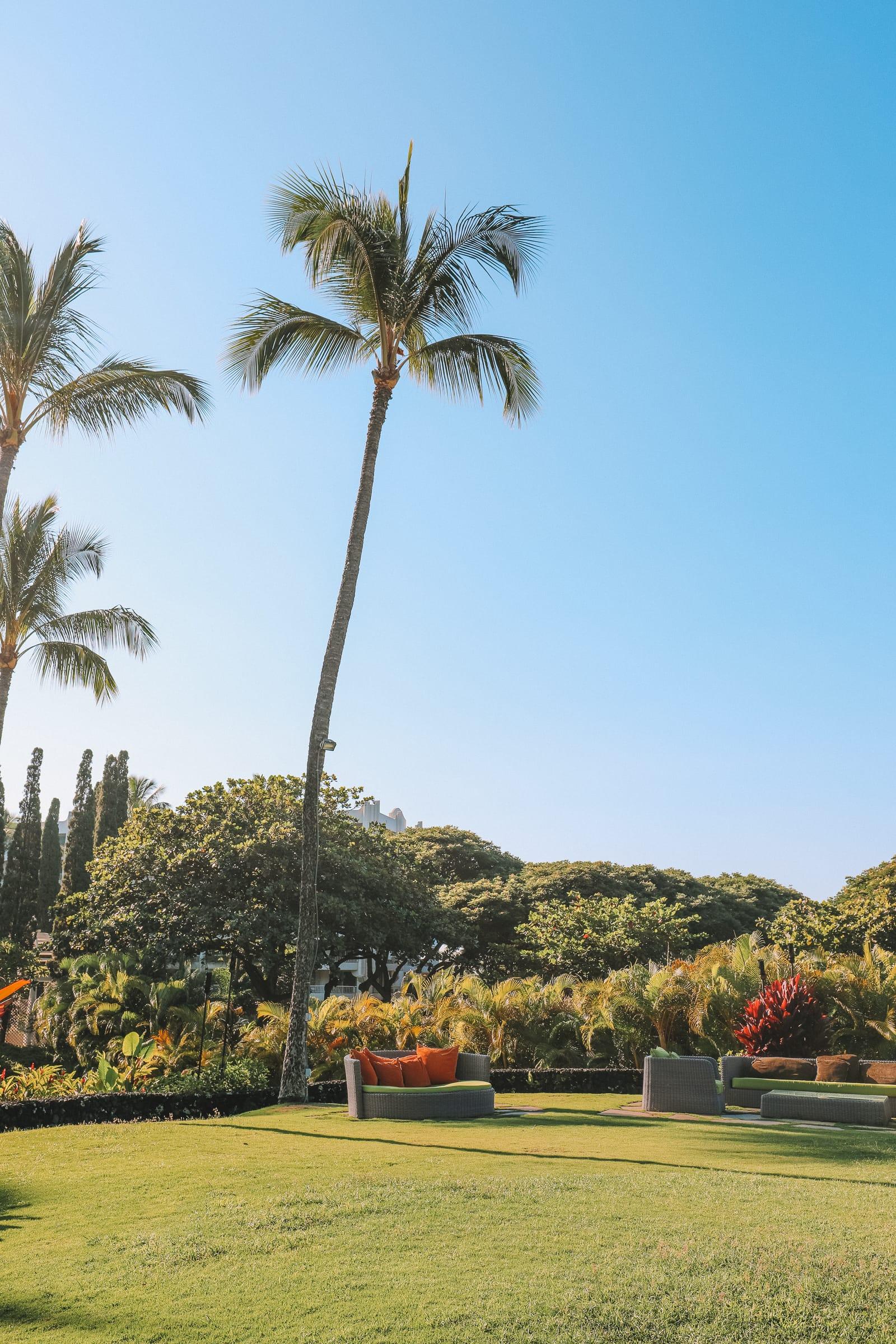 24 Hours In Maui, Hawaii (14)