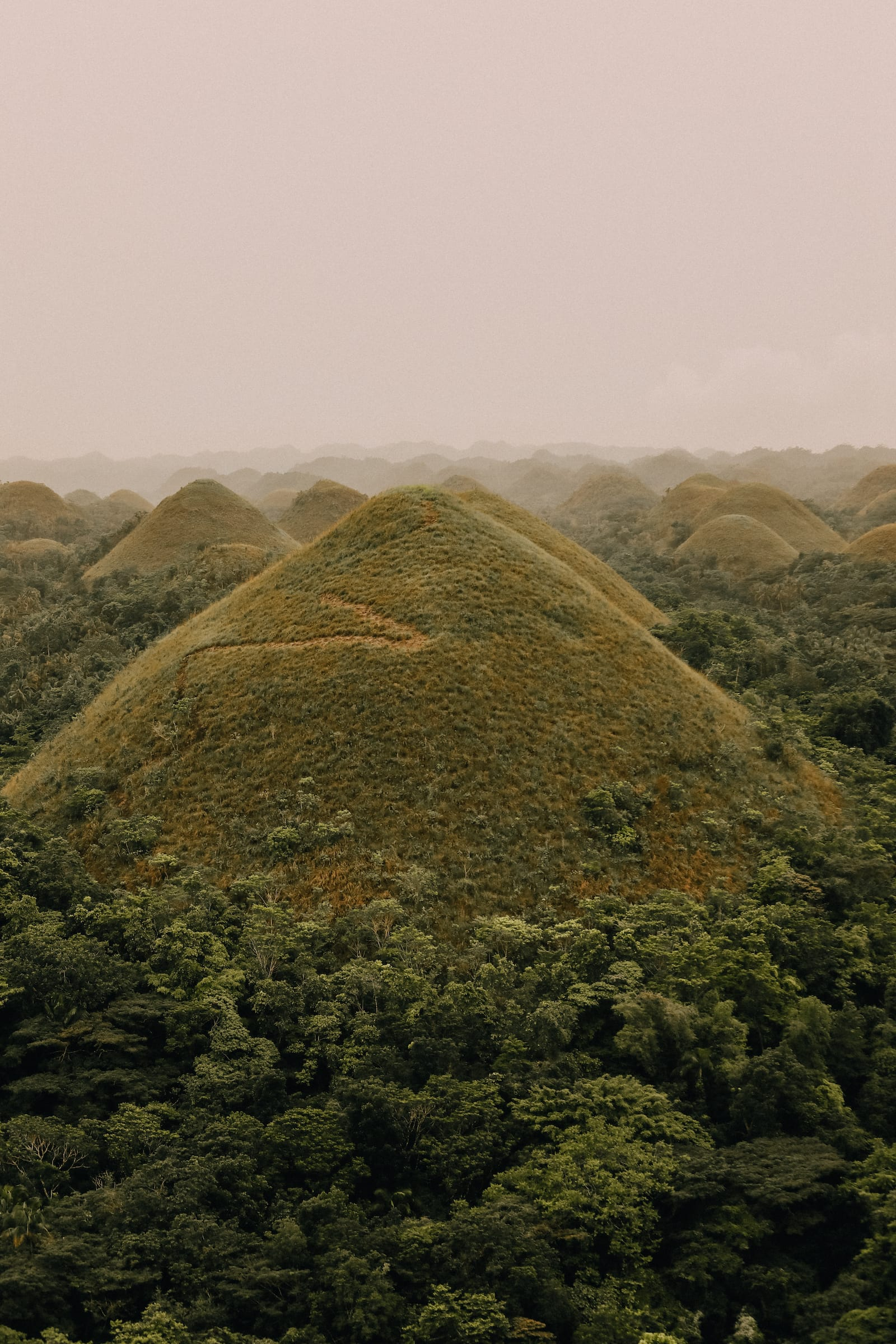 Photos And Postcards From Bohol In The Philippines (1)
