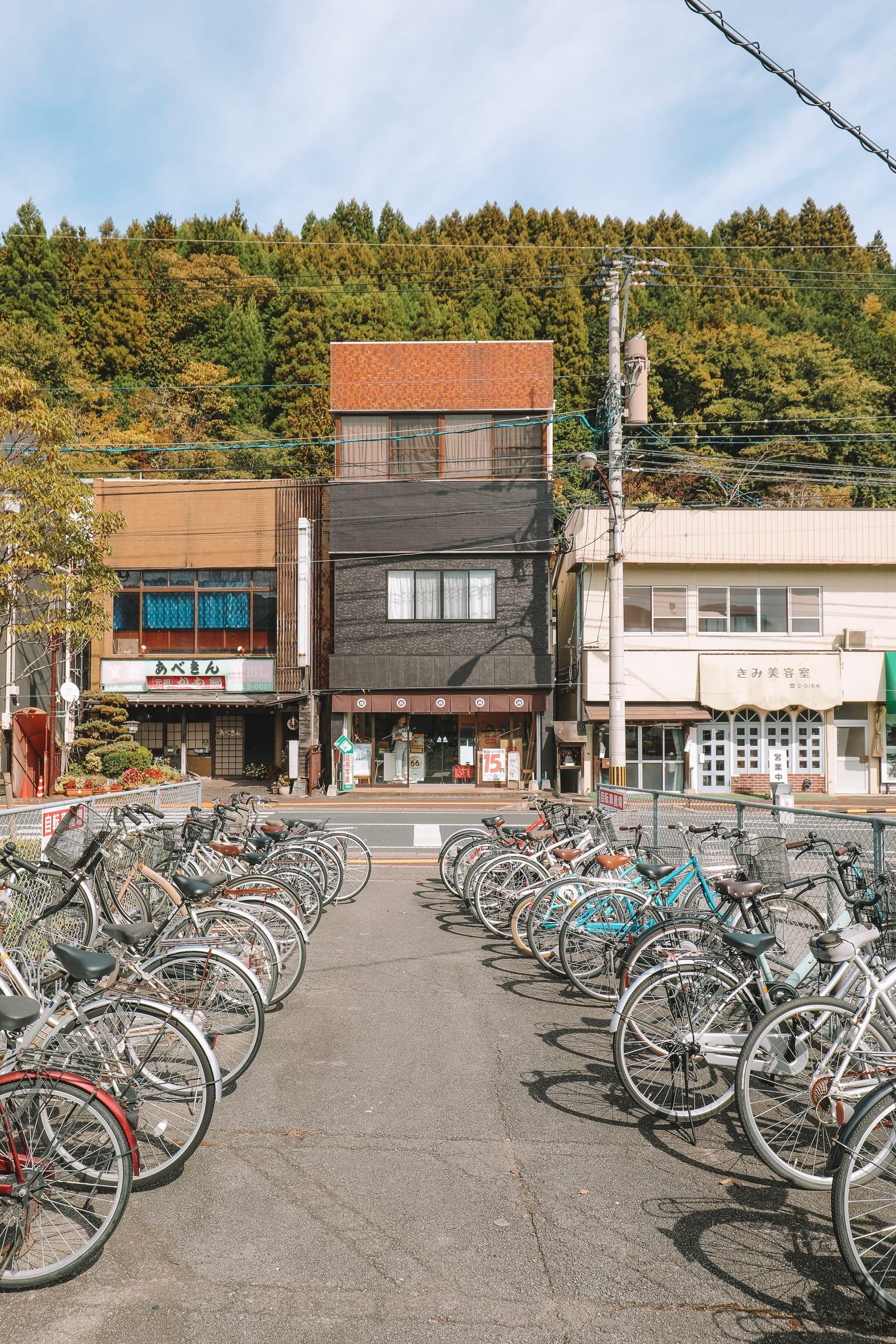 The Aru Ressha Sweet Train, Pretty Little Mamedamachi And A Night In Fukuoka, Japan (22)