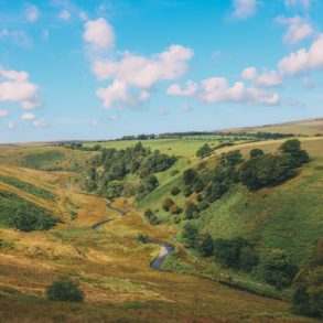 Searching For Wildlife In Exmoor, England (40)