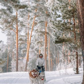 12 Of The Best Things to Do in Lapland, Finland (1)