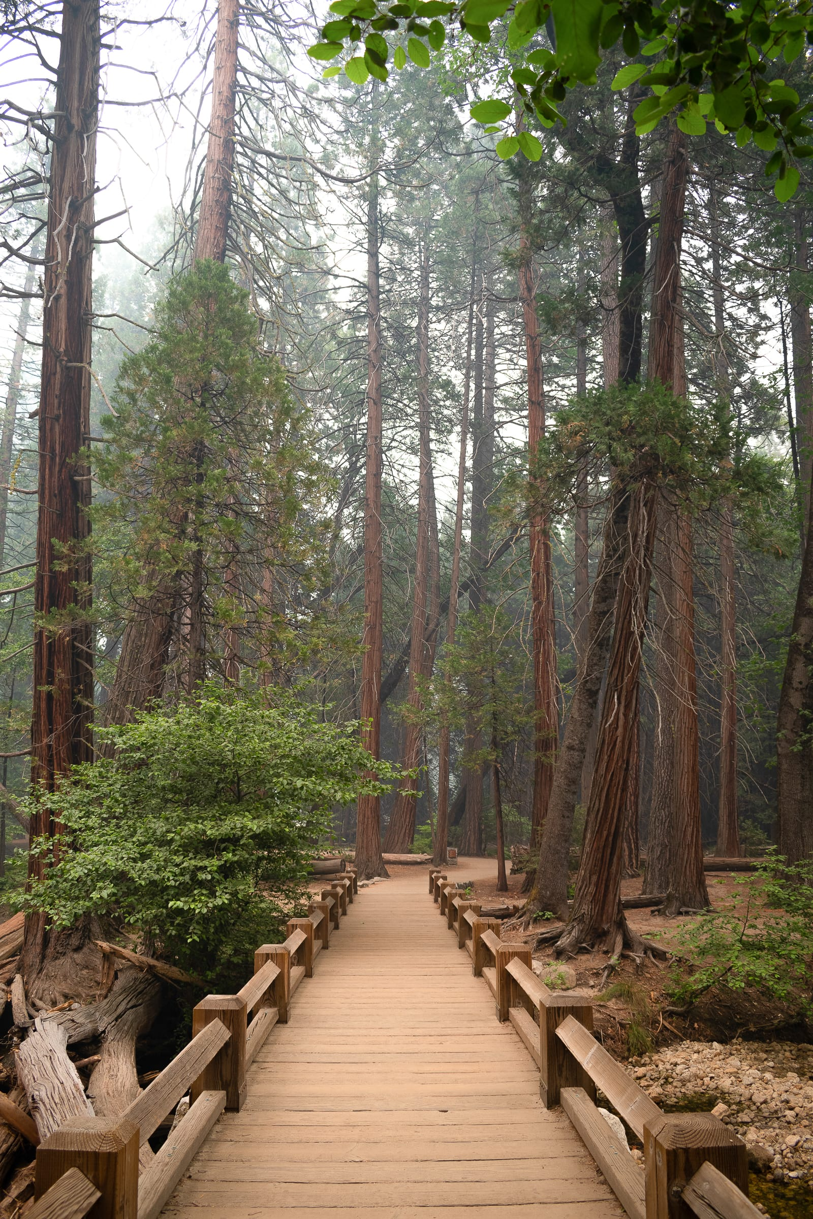 14 Best Places In California To Visit This Year (19)