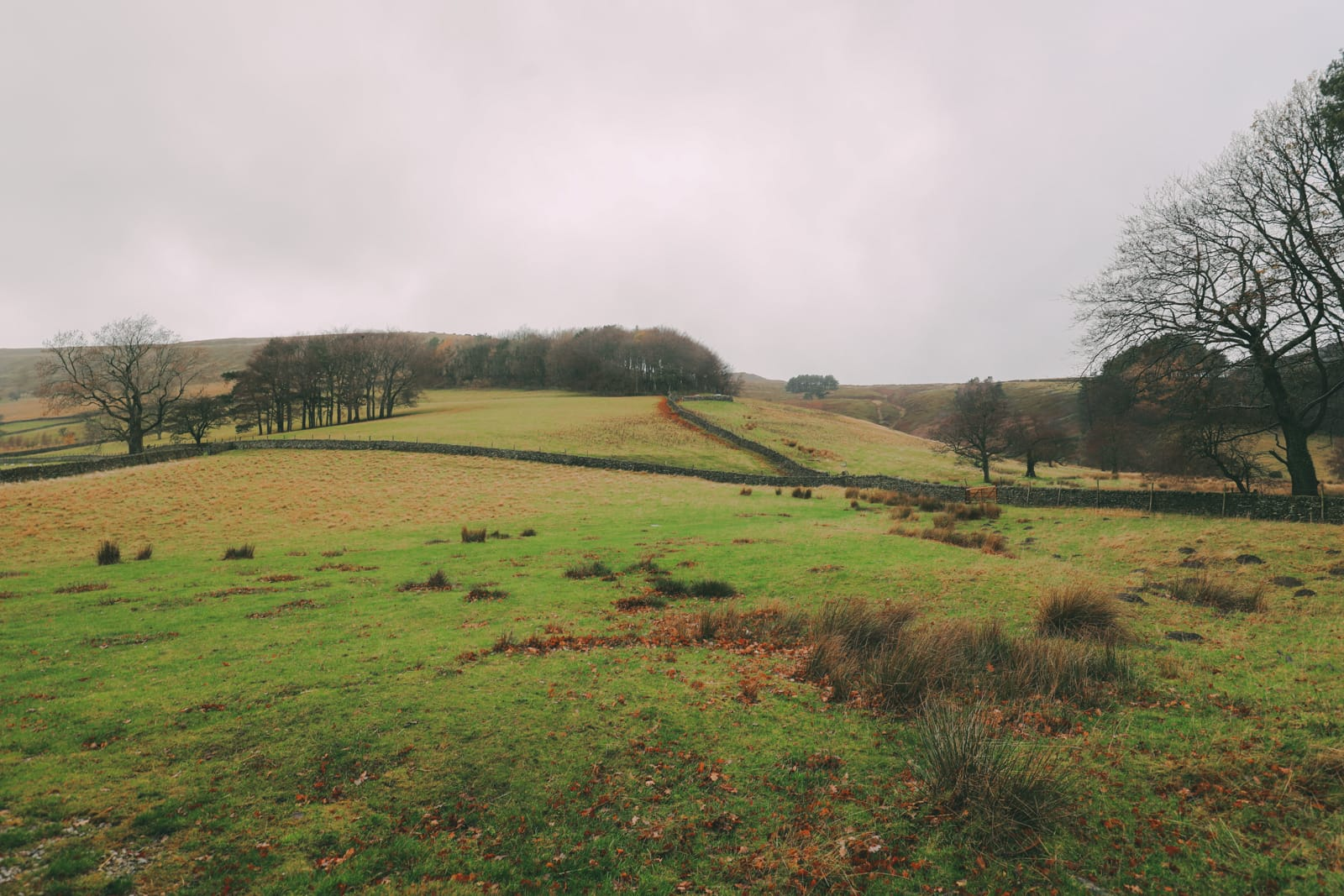 Finding Robin Hood's Bow And Safari Lodging In The Peak District, England (32)