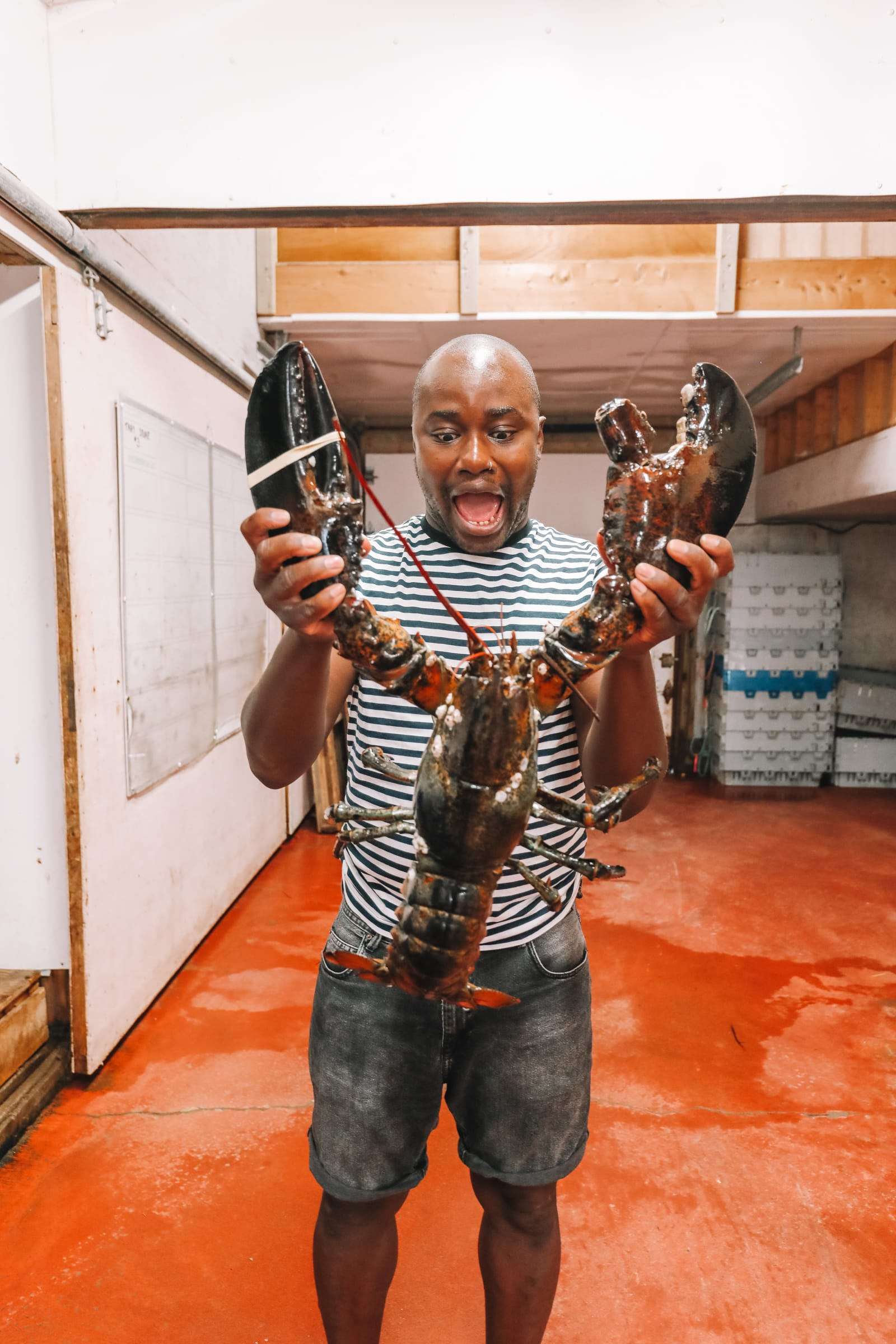 The Lobster Capital Of The World (33)