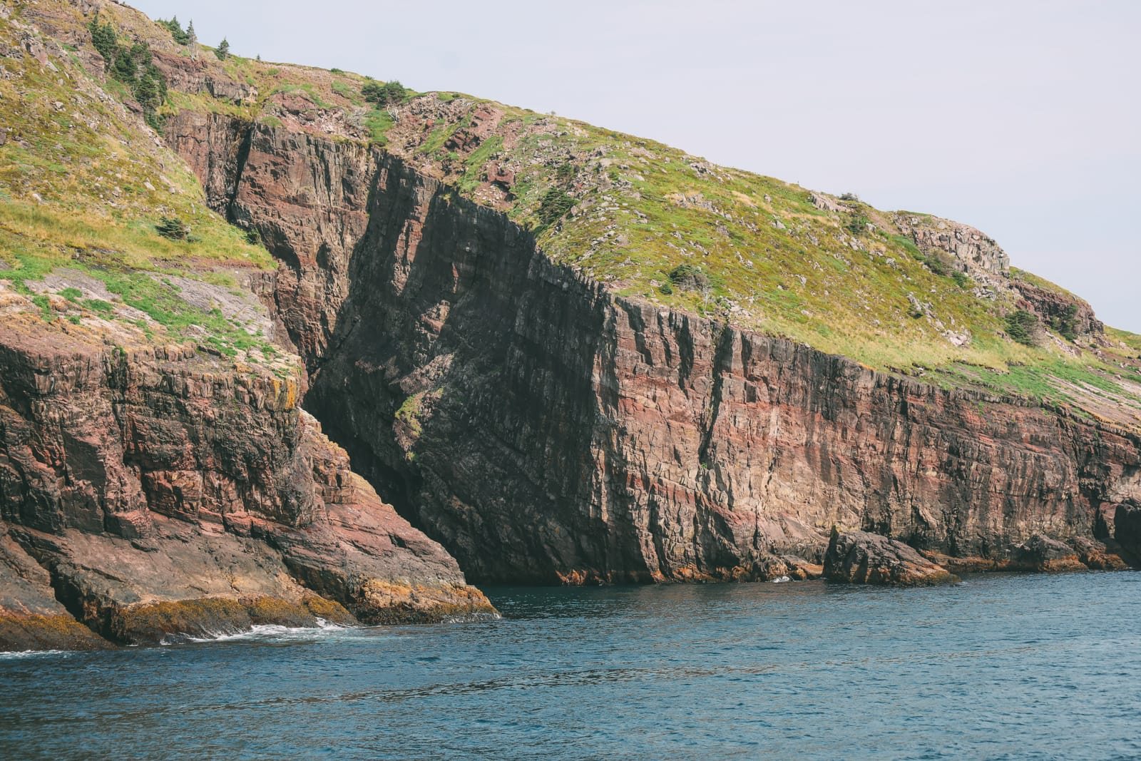 Searching For Puffins In Newfoundland, Canada (5)