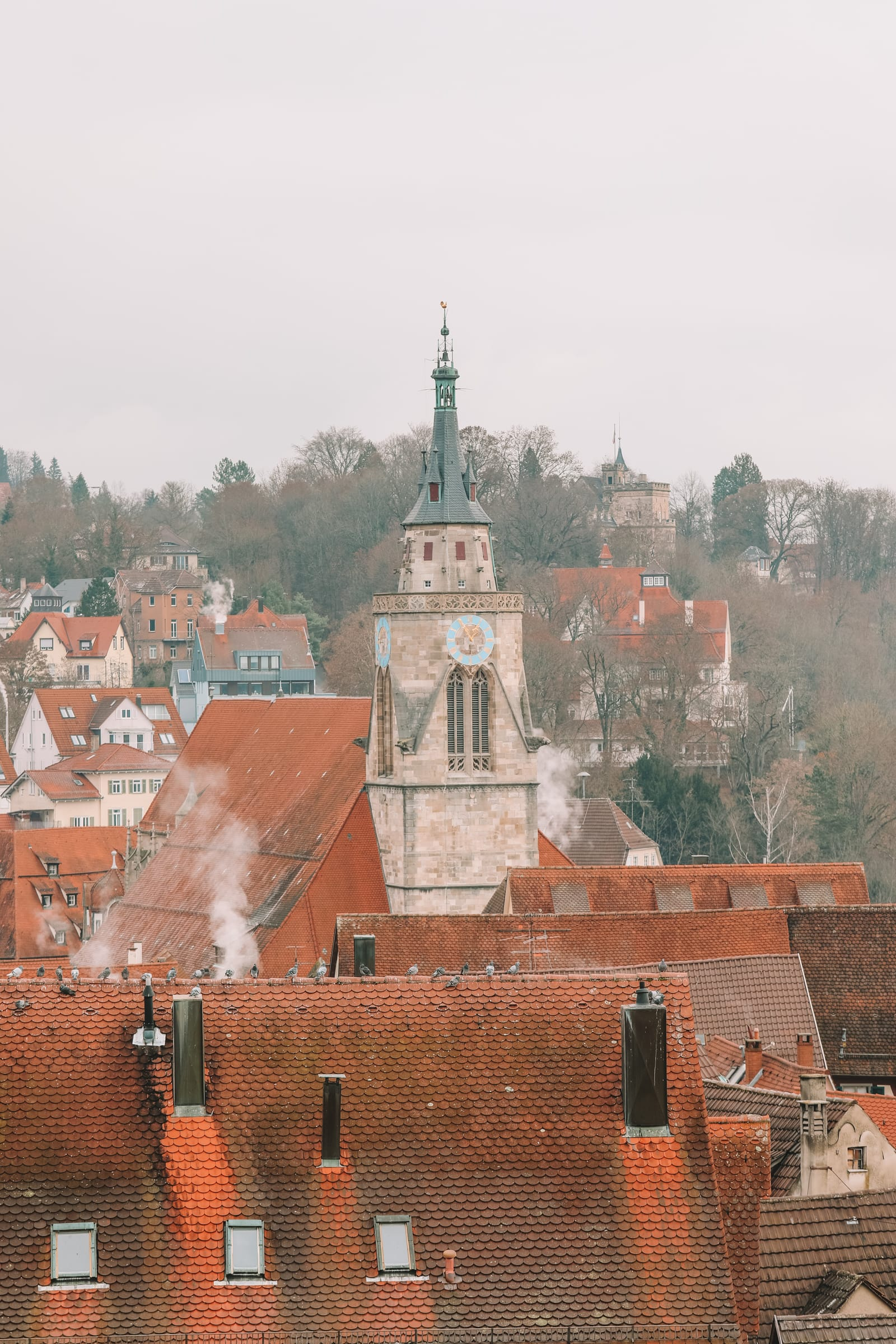 The Colourful Ancient City Of Tubingen, Germany (43)