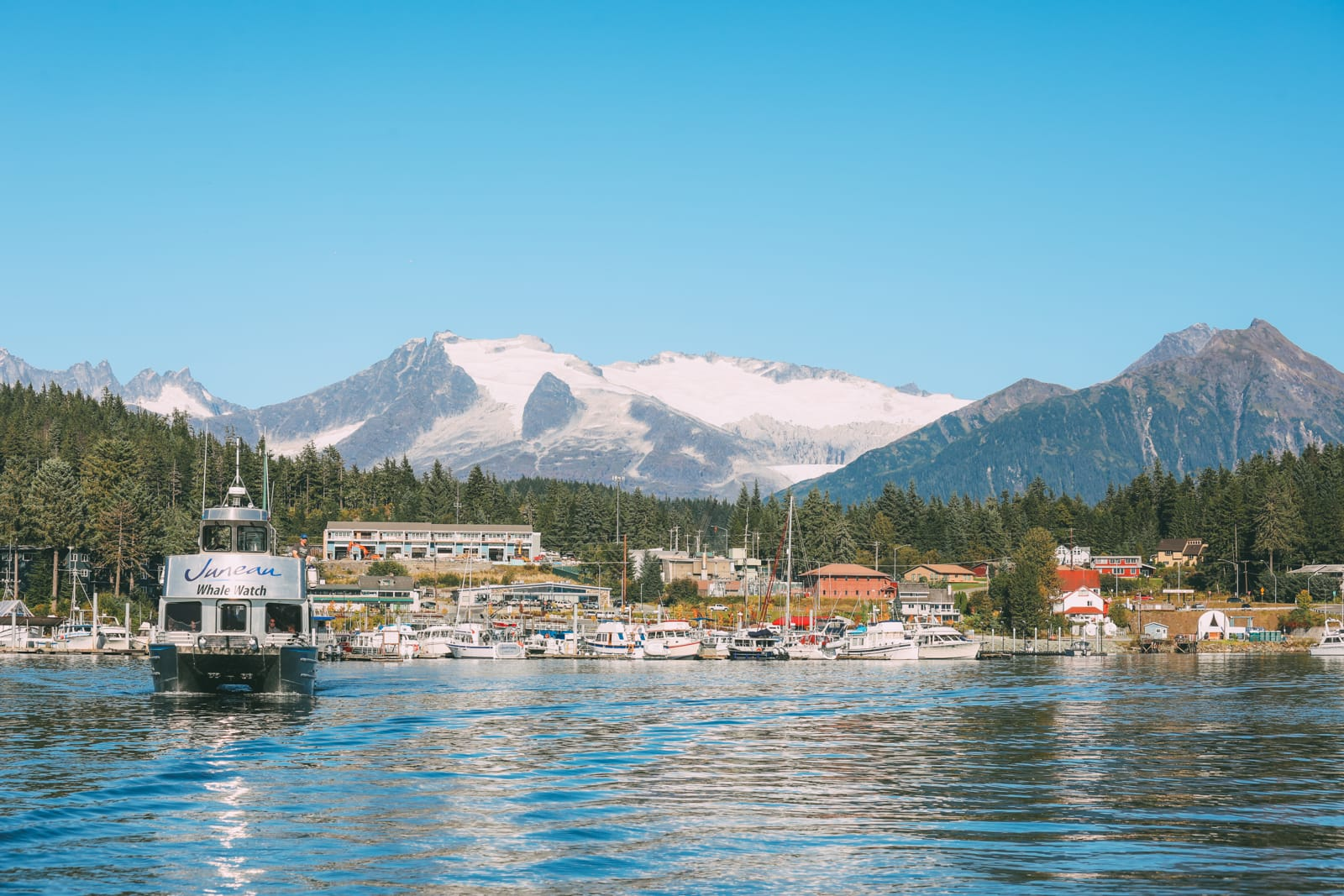 Humpback Whales, Glaciers And Northern Lights – The Most Magical Experience Aboard Celebrity Cruises Solstice To Alaska (2)