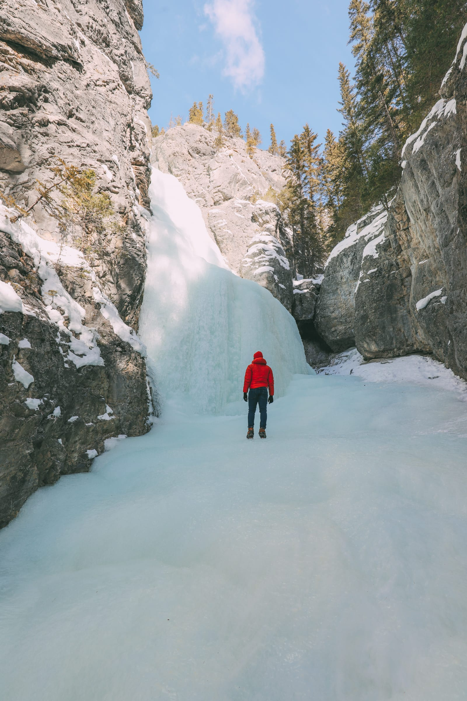 Grotto Canyon, Wolfdogs And The Canadian Rockies (18)
