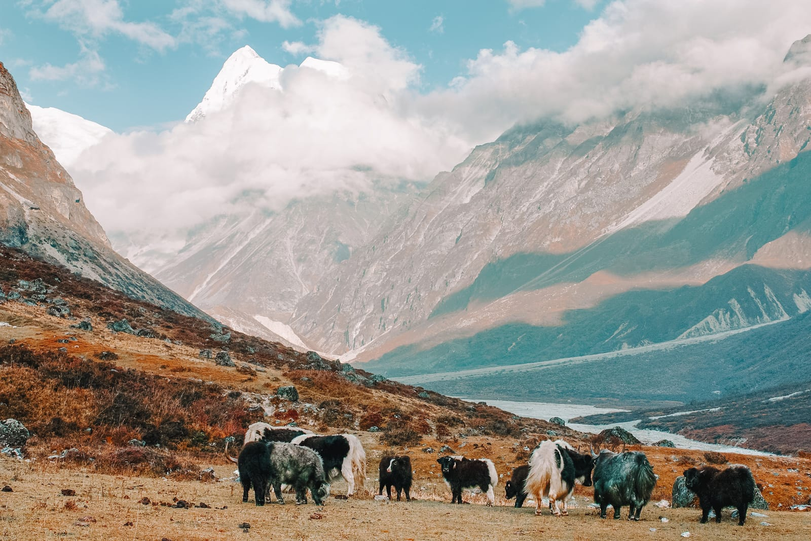 12 Best Hikes In Nepal You Have To Experience (9)