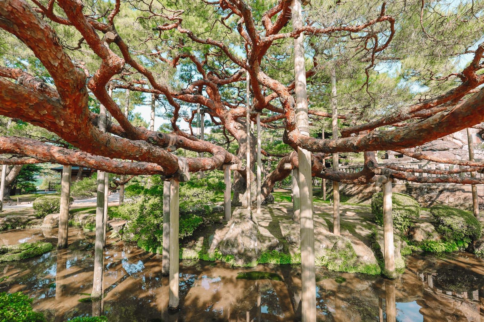 Exploring The Historic City Of Kanazawa - Japan (30)
