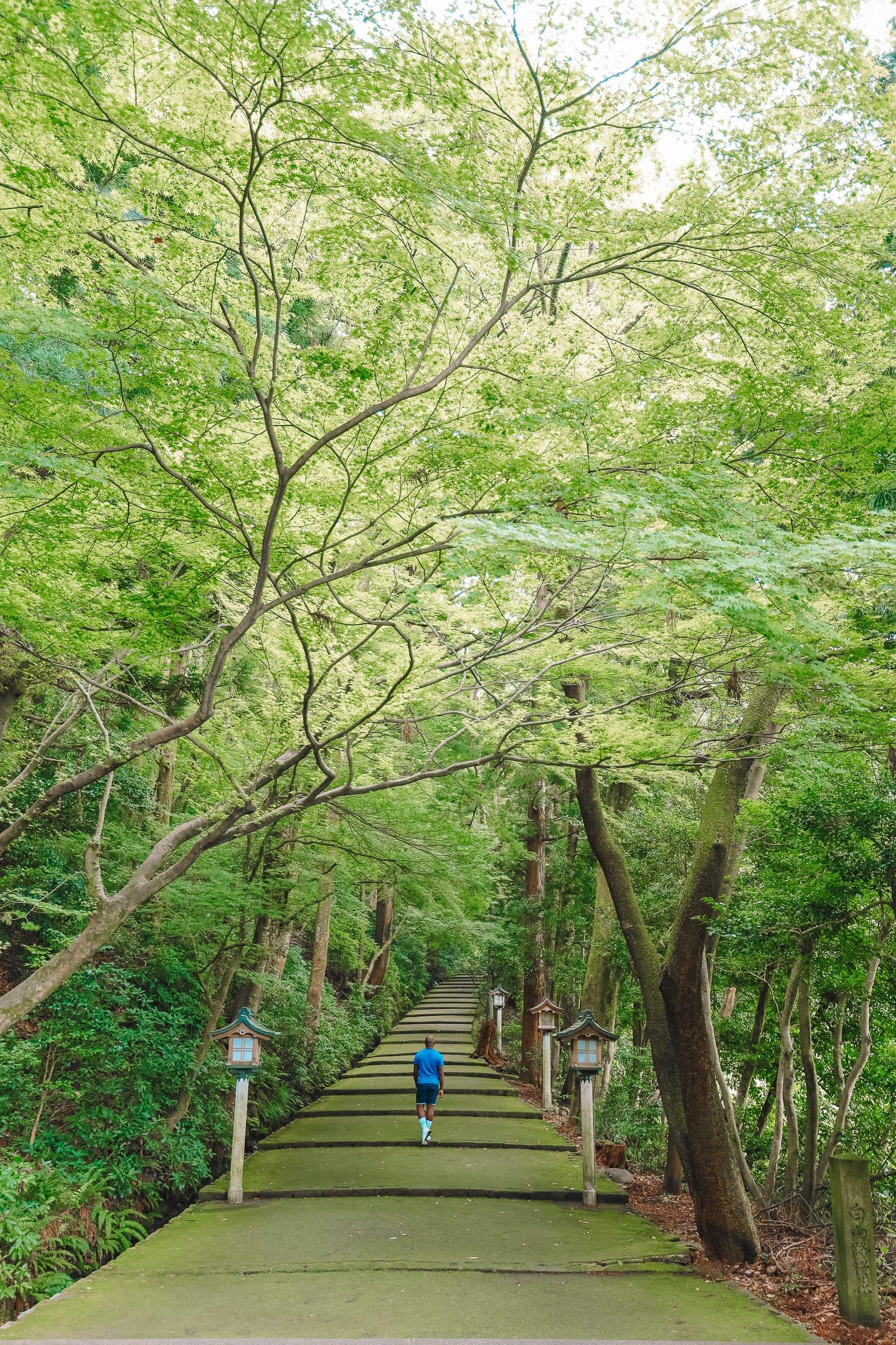 Finding The Samurai District Of Kanazawa and Hakusan City - Japan (33)