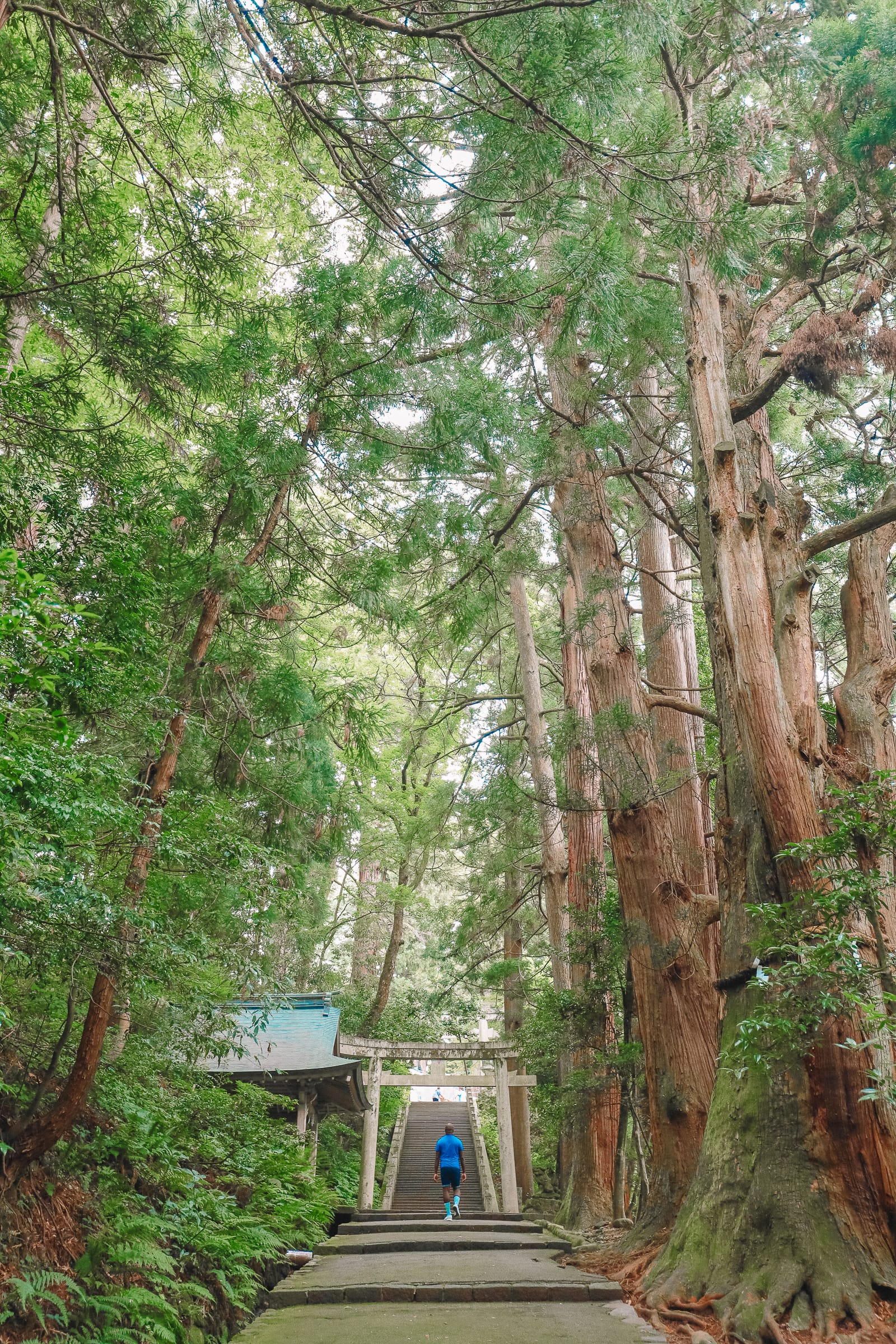 Finding The Samurai District Of Kanazawa and Hakusan City - Japan (31)