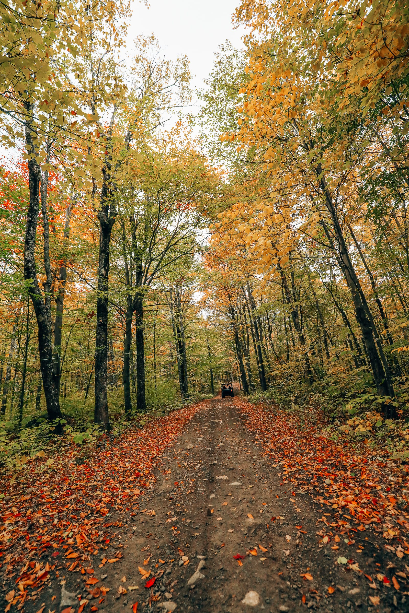 Exploring Sacacomie - Quebec's Stunning 'Hidden' Gem (43)