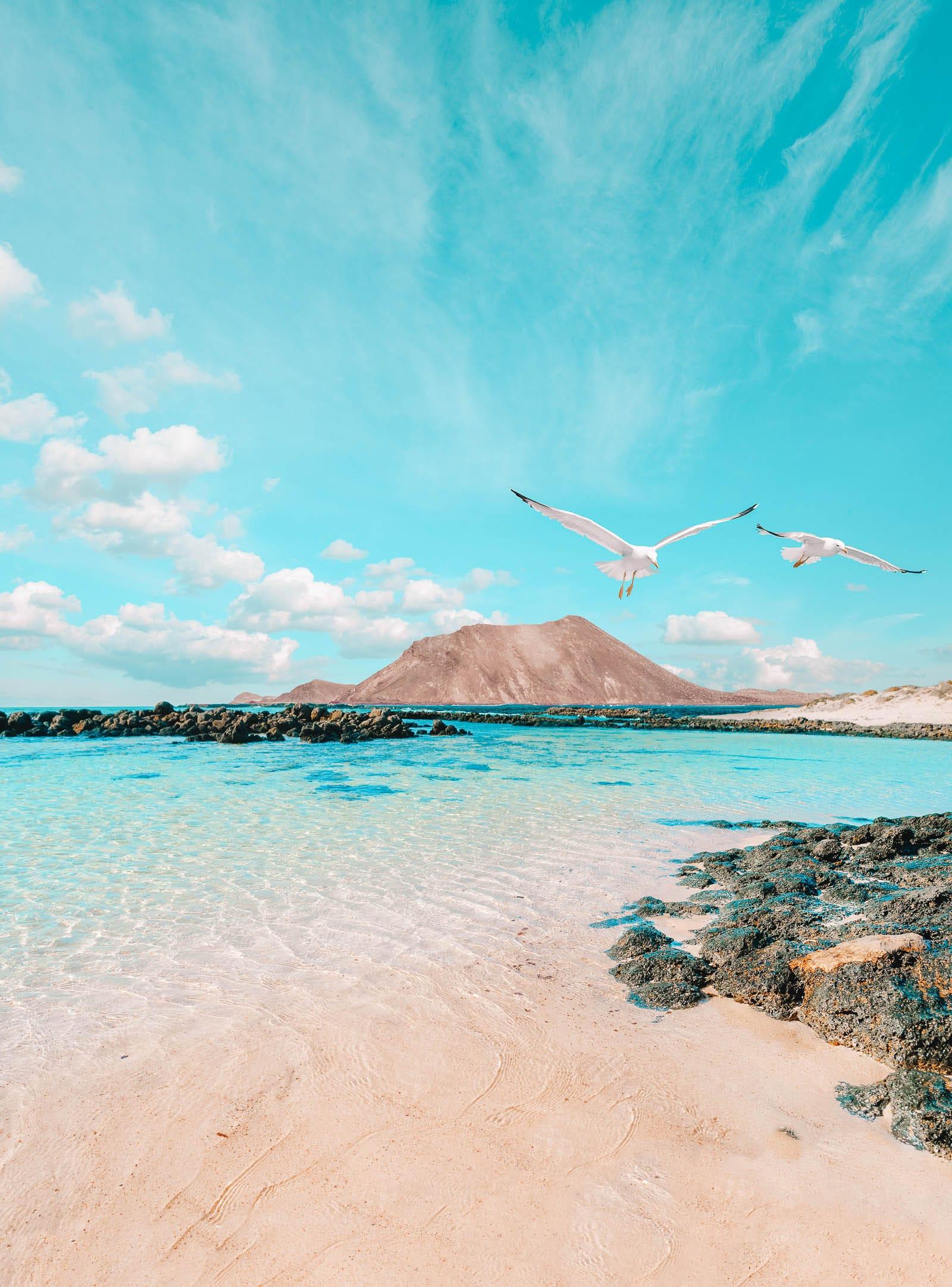 14 Best Things To Do In Fuerteventura (18)