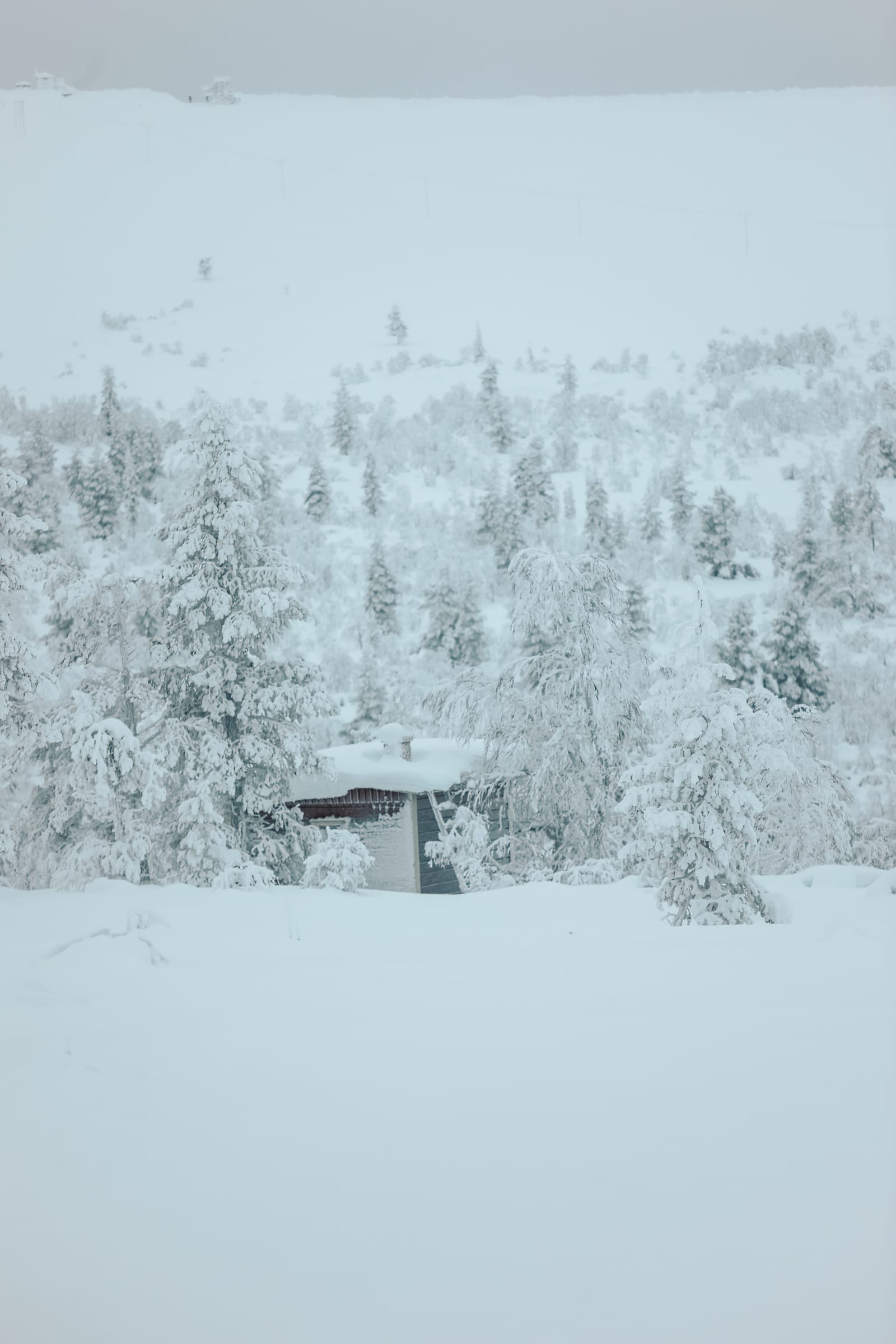 The First 24 Hours In Lapland, Finland (20)